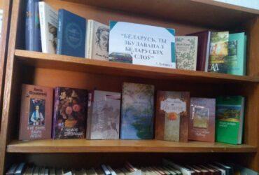 Мини-просмотр литературы и поэтическая полка в Житомлянской СБ